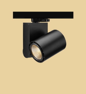 Picture & Display Lights