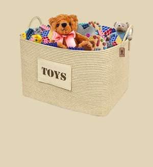 Toy Chests & Furniture